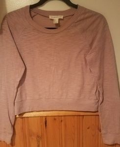 Forever 21 Lavender crop top longsleeve small
